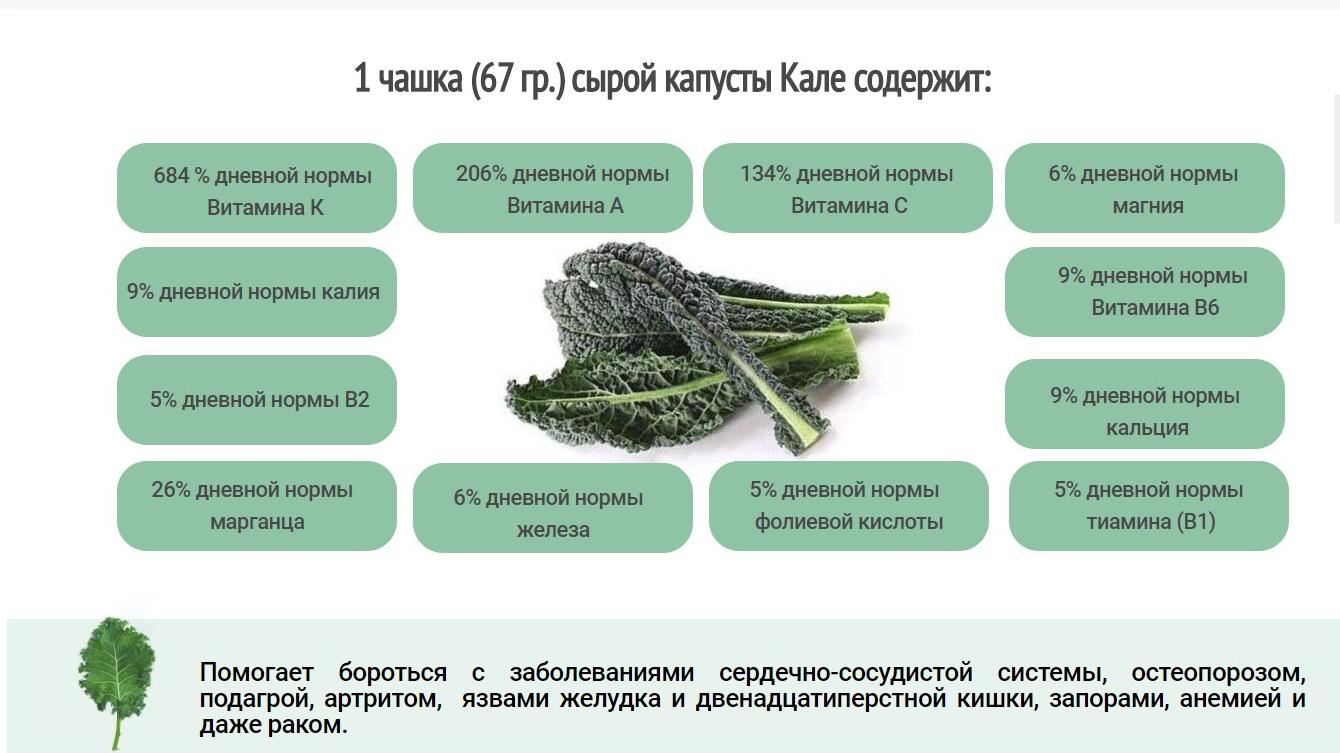 Полезные свойства листовой капусты Кале