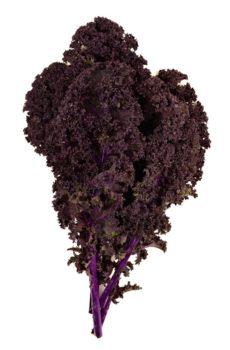 купить листовую капусту кале / кейл кудрявая красная