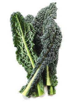 купить листовую капусту кейл / кале Тоскана